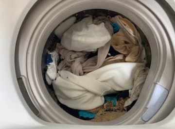 洗濯機で牛丼を洗ってしまいました… 「意味がわからない」大惨事画像と謎の顛末 画像