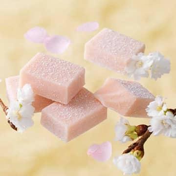 ストロベリーにキャラメリゼ、桜フロマージュ。ロイズから限定生チョコ発売!