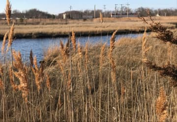 Do as I say, not as I do: If a private landowner tried to build on a wetlands area like the proposed site for an NJ Transit substation, the state environmental officials would be the first to object.