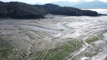 ノリの収穫期到来、海に漂う「緑の波」 浙江省寧海県