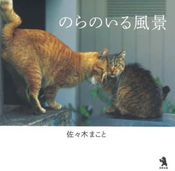 『のらのいる風景』(鈴屋出版)