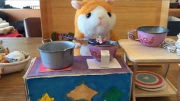 小3と中2の姉妹が作った「ハムスターのぬいぐるみがスープを調理する動画」に早くも才能を感じる 画像