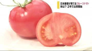 """糖度は通常の2倍! 日本郵便の""""トマト""""販売始まる 名前は「さやまる」"""