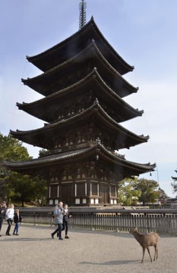 興福寺五重塔=19日、奈良市