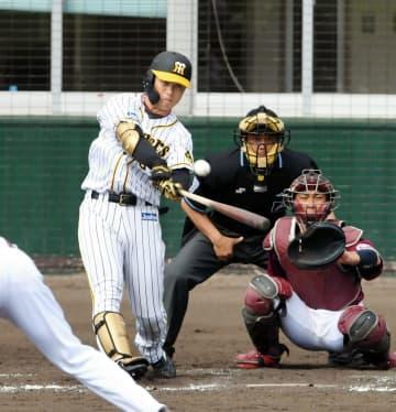 阪神・高山が本塁打 サンズと外野を争う