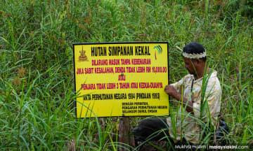Pulihara Hutan Kuala Langat, bukan 'gondolkan' - MNS