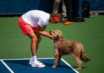 写真は2019年「全米オープン」犬と遊ぶズべレフ