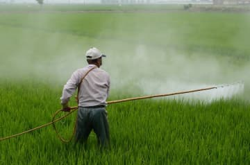 Nissan Chemical to set up pesticide joint venture in India