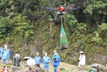 ドローンでスギの苗木を運搬した実証実験