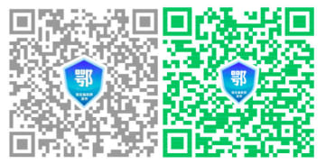 Screenshot of QR codes generated by Hubei residents. (Image credit: TechNode)
