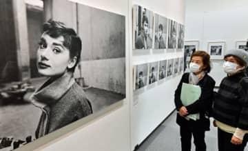 貴重な写真作品約150点が並ぶ「写真展オードリー・ヘプバーン」=13日、青森市の東奥日報新町ビルNew'sホール