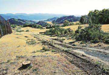 メガソーラーの建設に向け樹木の伐採が始まったゴルフ場跡(和歌山県上富田町市ノ瀬で)