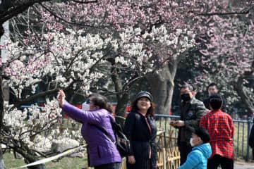 公園で春を満喫 山東省青島市