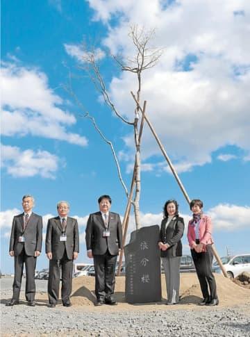 浪分桜の植樹式に参加した関係者