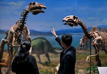 内モンゴル博物院、一般公開を再開