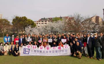 上海で中日友好桜の観賞イベント開催 生産・生活の回復示すサイン