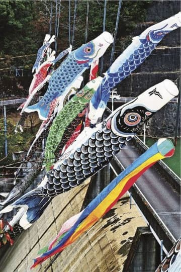 色鮮やかなこいのぼりがダムの堤の上で舞う(和歌山県みなべ町東神野川で)