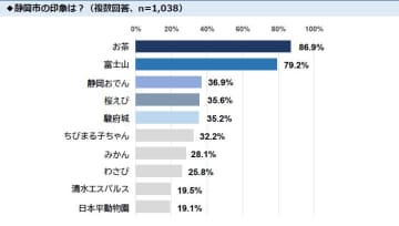 東京都民約1,000人に聞いた第5回「静岡市イメージ調査」 『静岡おでん』3位、『駿府城』5位に初ランクイン