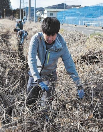 側溝の泥上げ作業をする大学生ら
