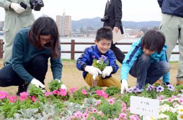 花壇に花を植える参加者たち=唐津市東唐津
