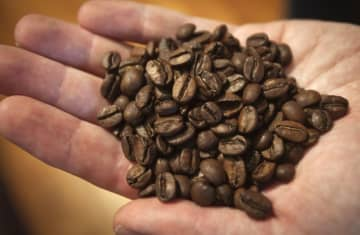 A handful of coffee beans (photo credit: REUTERS/CARLO ALLEGRI)