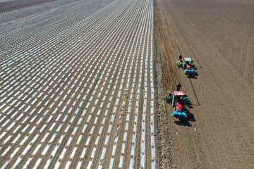 イリ河谷で春の耕作始まる 新疆ウイグル自治区
