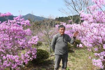 所有地にイワツツジ400本を植えた私設公園を造った川野久幸さん