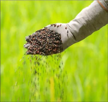 Govt. lists fertiliser supply as an essential service | Daily FT