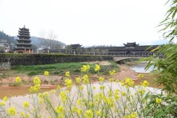 福建省北部最長の古廊橋 優雅で素朴な文昌橋を訪ねて