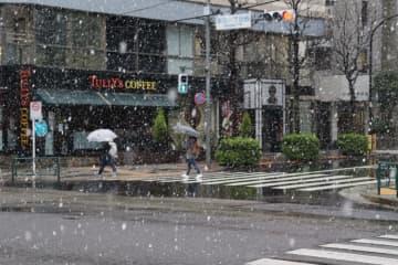 29日午前9時ごろ 東京新宿にて(撮影:千種ゆり子気象予報士)