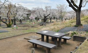 桜が見ごろを迎えながらも空席が目立つこども自然公園のバーベキュー広場=27日、横浜市旭区