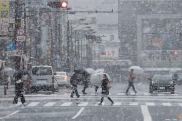 東京都心で積雪 画像