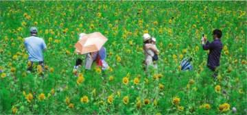 最優秀賞に選ばれた北川さんの「ほのぼのした季節」
