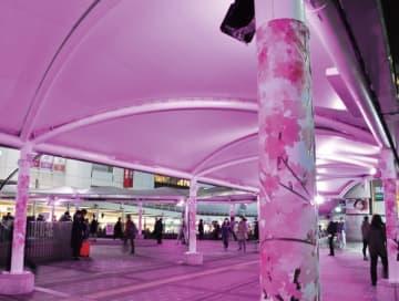 JR町田駅玄関口を明るく 桜色にライトアップされたテントや支柱が好評
