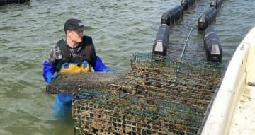 Scott Lennox, co-owner of the Barnegat Oyster Collective and Forty North Oyster Farms, says business is taking a major hit due to the coronavirus outbreak. (Photo courtesy of Barnegat Oyster Collective/)