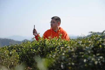 「教授兼県長」が茶葉販売のインフルエンサーに変身 湖南省安化県