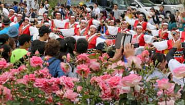 43団体約2500人が参加してにぎわう福山ばら祭のローズパレード(2019年5月19日)