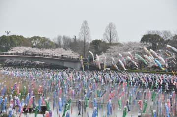 【2020年4月・開催日順】日本の祭りはこんなにも美しい。日本全国 4月の祭りカレンダー