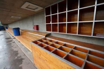 経済支援受けられぬ球場勤務者が悲痛な訴え【写真:Getty Images】