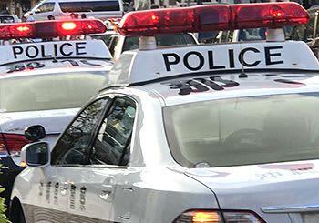 大麻密売疑いで男女8人を摘発 「自分で使用する目的で所持していた」