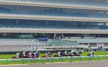 無観客で実施されたJRAのレース=2月29日、阪神競馬場