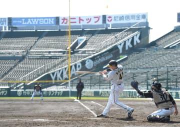 無観客で行われたオープン戦=3月6日、甲子園
