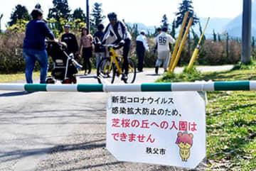 芝桜の丘は封鎖されたが、入園者は後を絶たなかった=4日午前10時55分ごろ、秩父市大宮の羊山公園
