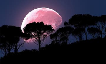 """The biggest and brightest supermoon is coming this week. It's also known as the full """"pink moon"""" because of the pink flowers that pop up in April. (Photo illustration 
