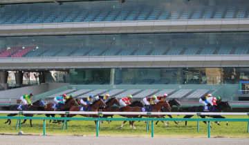 無観客で行われたG1レースの大阪杯=5日、阪神競馬場