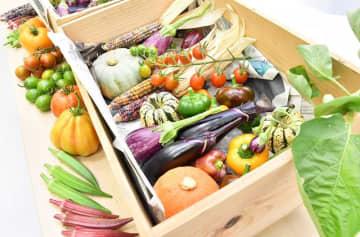 JA横浜/クックパッド「生鮮食品EC」出店、市内の農畜産物販売