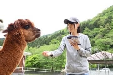 アルパカと触れ合いながらスマートフォンで撮影する飼育員の中倉恵さん=胎内市