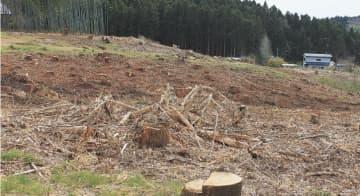 太陽光発電所の建設予定地。既に杉材が伐採された