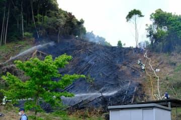山林5千平方メートル燃える 京都・舞鶴、けが人なし