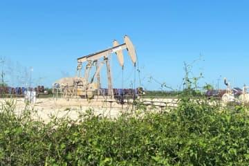 原油先物は上昇、減産継続期待や行動規制の緩和で